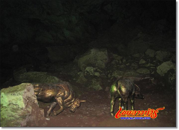 ถ้ำพอทรพาลูกทรพี เมืองเชียงรุ้ง สิบสองปันนา จีน